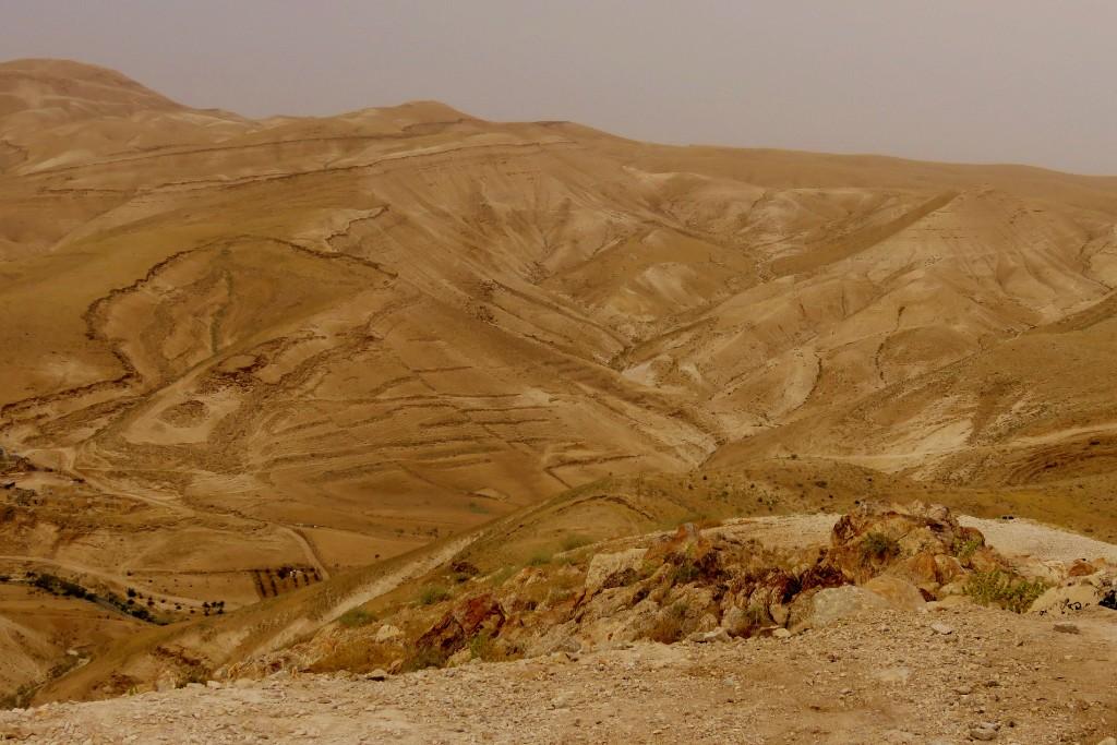 krajina v Palestině
