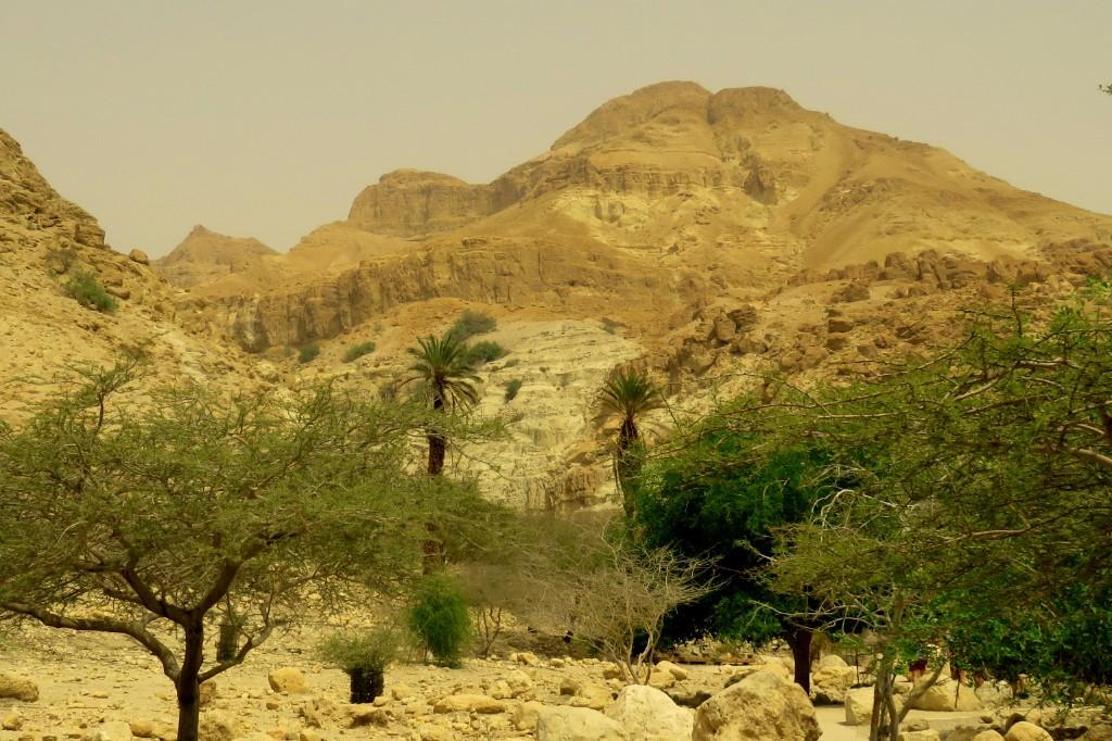 Mount Yishay