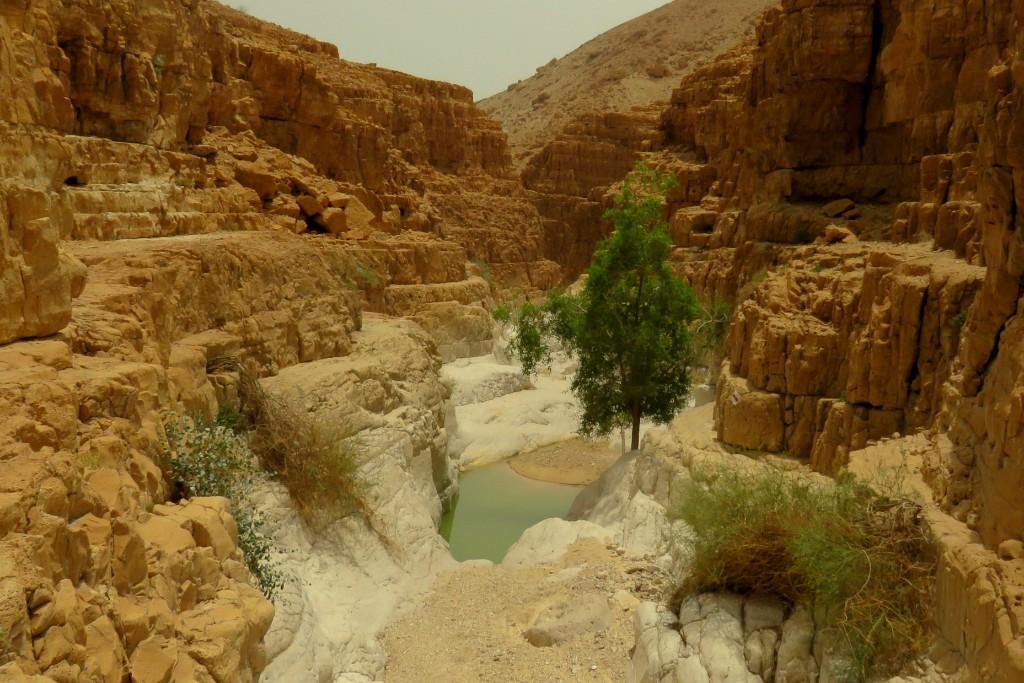 kaňon v Ein Gedi National Park