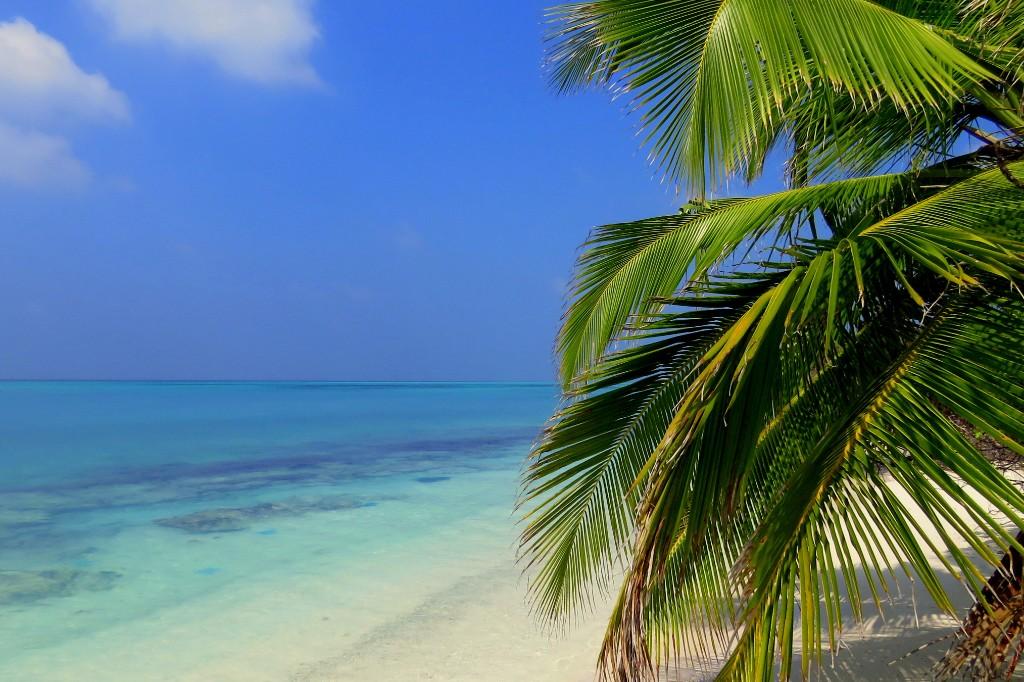 lelkování na ostrově Thoddoo